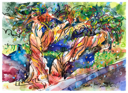 watercolor painting of twisty bark trees by emily weil