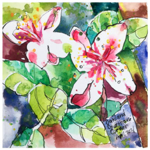 watercolor painting of flowers by emily weil