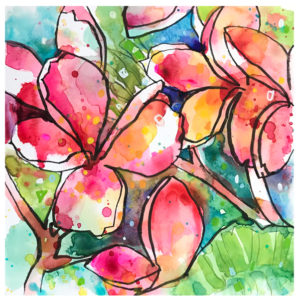 watercolor painting of plumeria by emily weil