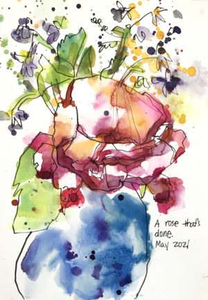 watercolor of wilted rose by emily weil