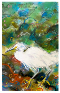 watercolor + pastel painting of snowy egret by emily weil