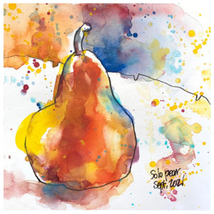 watercolor and ink drawing of pear by emily weil